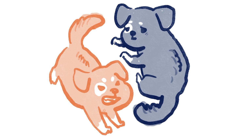 害怕的狗狗要咬人的插圖