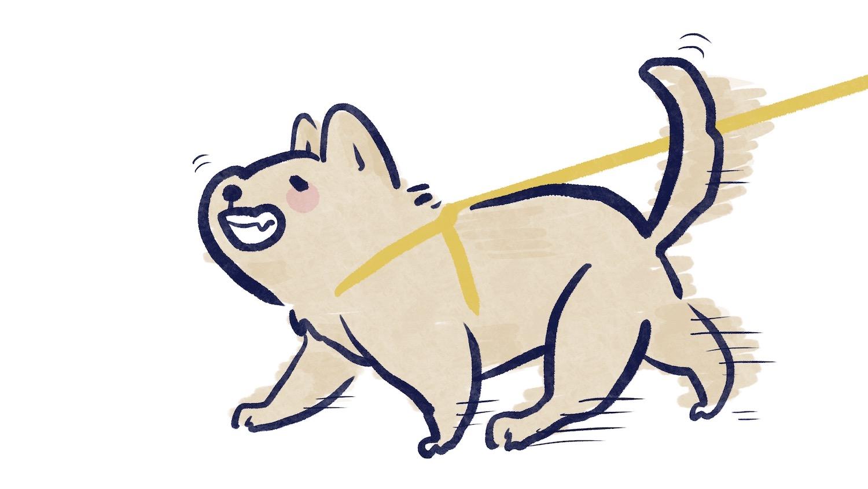 狗狗散步拉扯牽繩的插圖