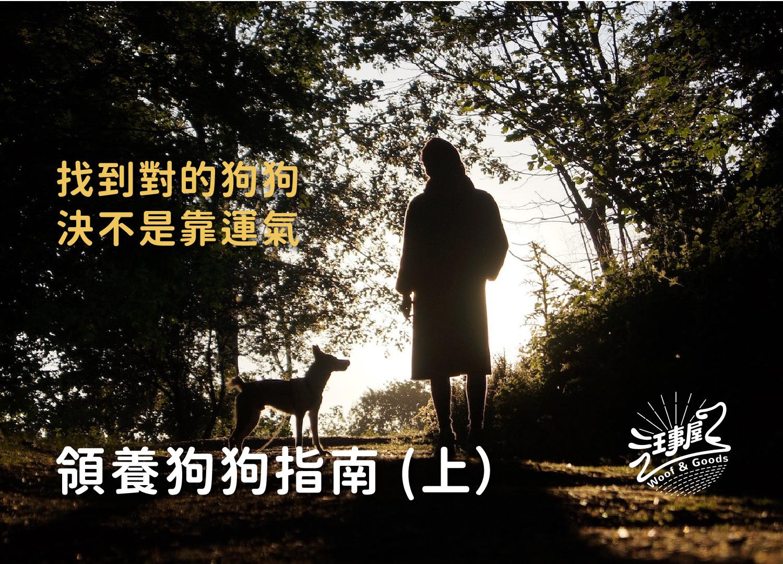 主人與狗狗散步的照片